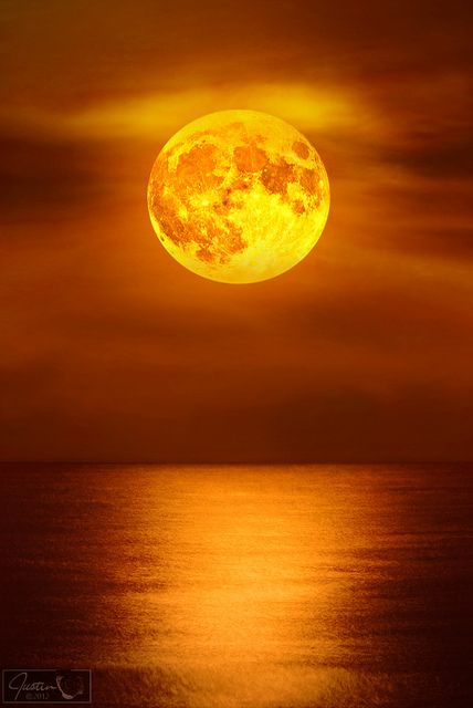 ✯ Moonlight Reflections over Palm Beach, Florida