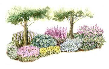 Shady Haven Garden PlanGardens Ideas, Haven Gardens, Mature Trees, Shadegarden, Side Yards, Front Yards, Gardens Plans, Shades Area, Shades Gardens