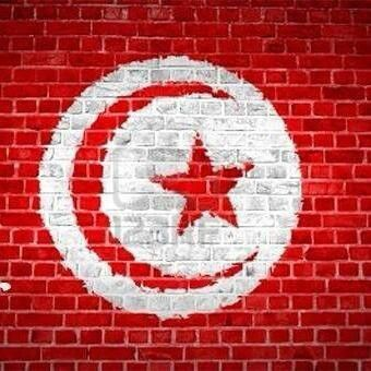 Tunisia Flag on wall