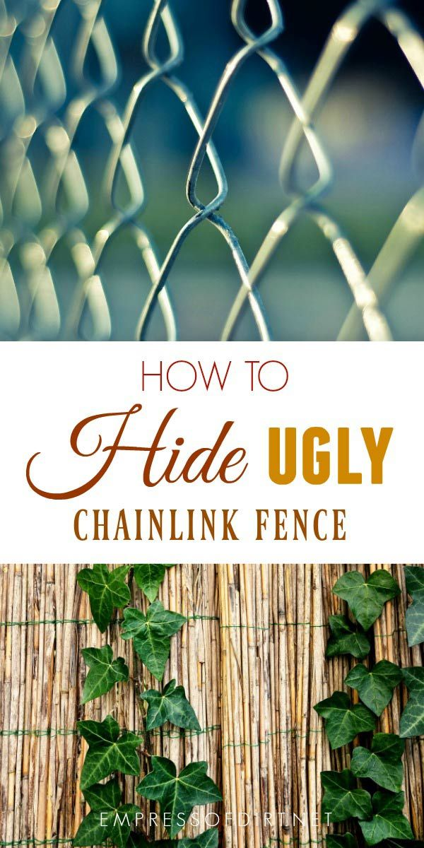 How To Disguise Ugly Fences Including Chainlink Hiding
