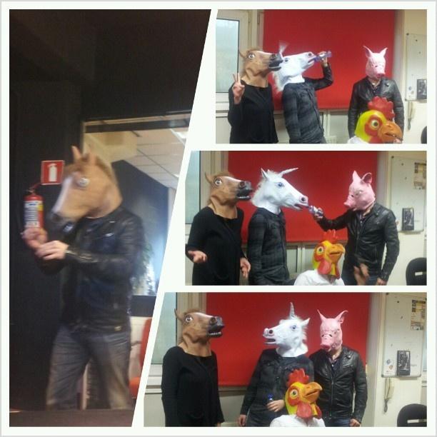 Wer ist wer? Val, Vie, Seb & Andres haben unsere coolen #Tiermasken für euch getestet. Fazit: Echt cool! #maske #tiermaske #animalmask #prancercise #pferd #schwein #huhn #einhorn #gadgets #megagadgets #fasching #karneval #halloween