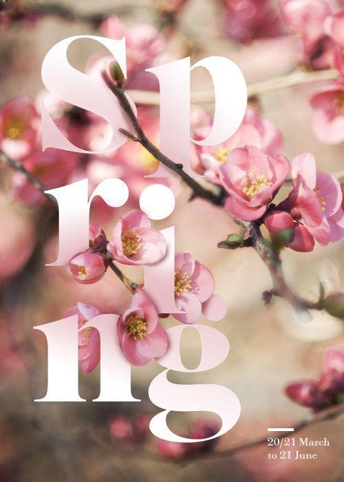 寒い冬が終わり、ついに花で溢れる春がやってきました! ワクテカしながら春に関するデザインや素材を集めたので、今日はそれをまとめてご紹介したいと思います。 春デザインの参考画像 バナー・メインビジュアル