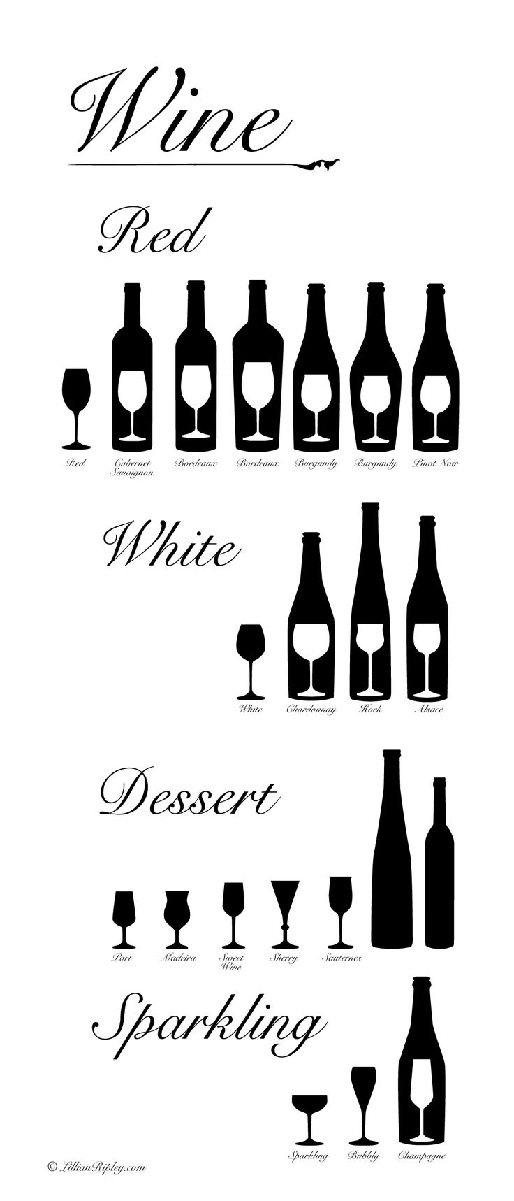 Wine Infographic - Shape of Wine Glass and Wine Bottles Information