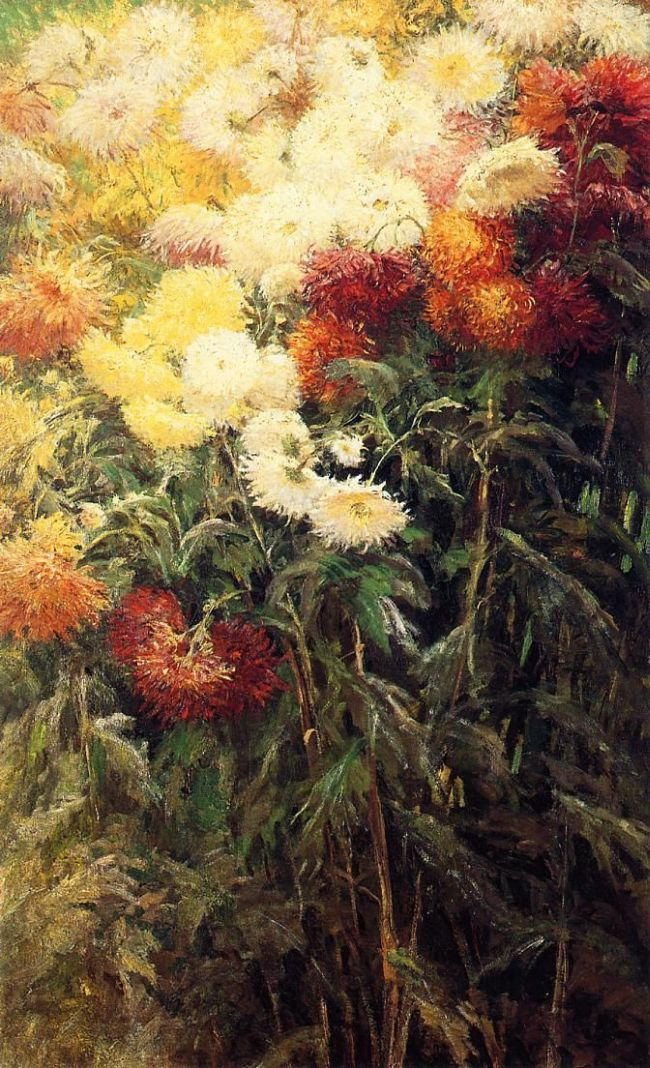 GUSTAVE CAILLEBOTTE Chrysanthemums, Garden at Petit Gennevilliers (1893)