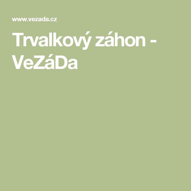 Trvalkový záhon - VeZáDa