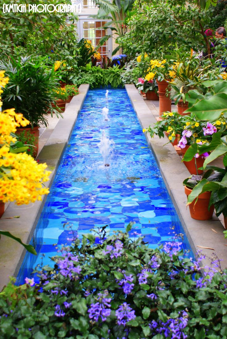 Botanical Gardens Washington Dc
