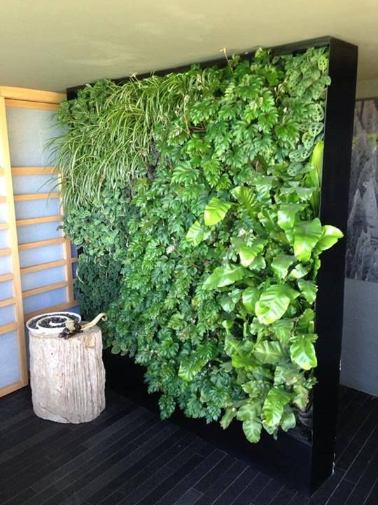 112 best images about jardines verticales on pinterest - Jardines verticales interiores ...