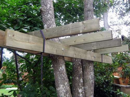 good DIY info on this site... tree houses
