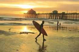 100 Things to do in Orange County, California (University of California, Irvine.)