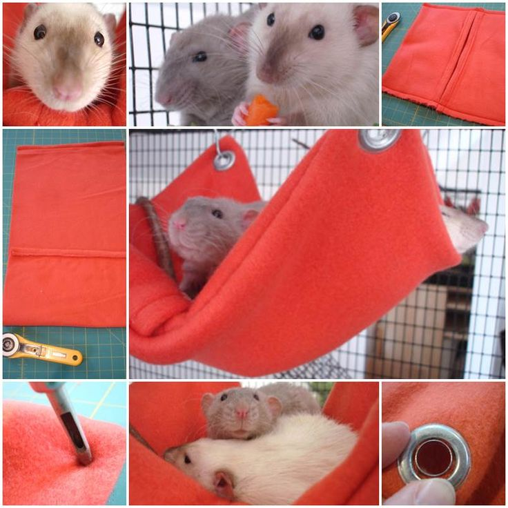 DIY Hamster Fleece Hammock
