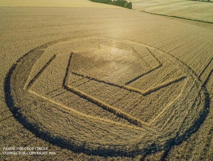 crop circle ha sido reportado el 6 de agosto de 2016. Apareció en 25 de julio 2016 en Mount Pleasant, nr Cheesefoot Head, Hampshire, Reino Unido