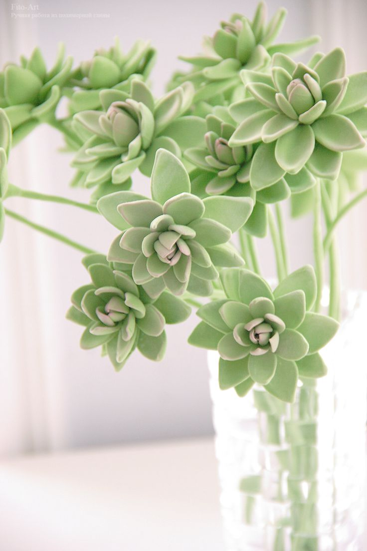 Polymerclay handmade succulents