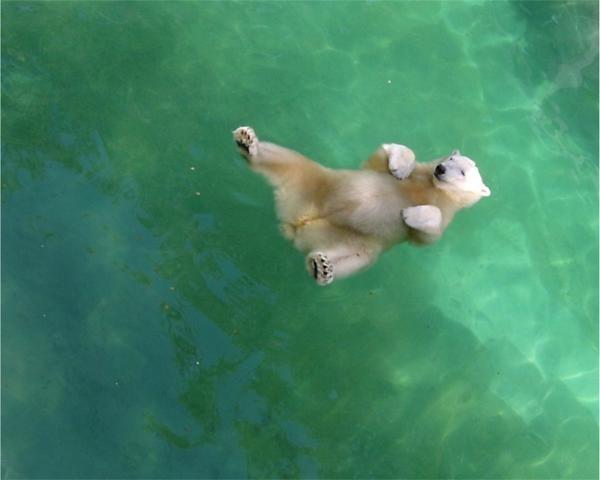 Floating.