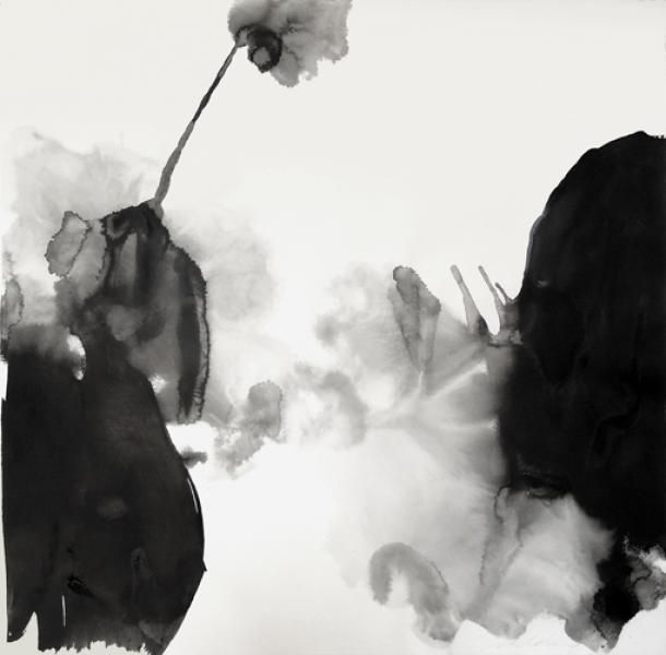"""Sciaphiles (13B), 2014, Encre sur papier, 100 x 100 cm. Samedi 5 novembre de 15h à 19h, rencontre avec l'artiste Patricia Erbelding à l'occasion de l'exposition """"Sciaphiles"""" qui se tient jusqu'au 15 novembre 2016 à la Galerie Jacques Lévy - 62, rue Charlot, 75003 Paris Tél: +33(0)1 4278 7924 Cell: +33(0)6 1143 6905 j.levy.galerie62@wanadoo.fr  www.galeriejacqueslevy.fr"""
