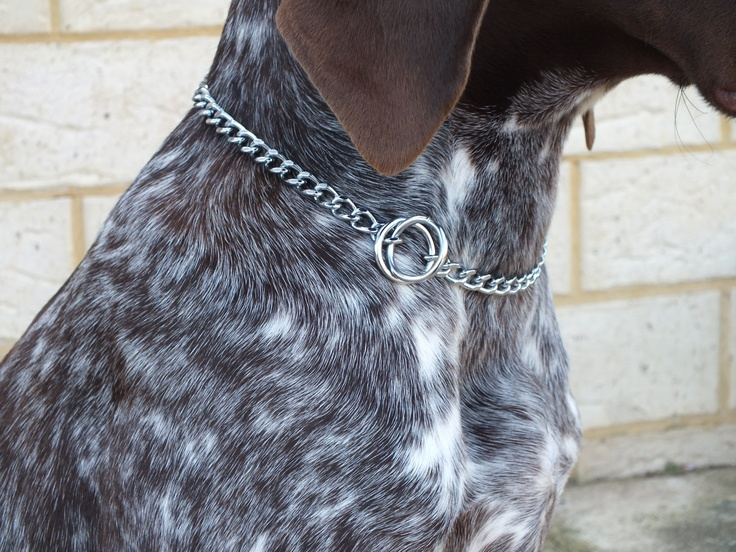 This product is part of our Standard range of round link chain collars, it is the style that is most often used by Trainers & other professional dog handlers, along with being the most popular type for the home dog; the 1.35mm (wire diameter) Chrome plated steel collar is recommended for very small - small dogs similar in size/strength to the Yorkshire Terrier or Shitzu