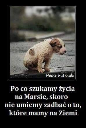 grazmiko – Google+