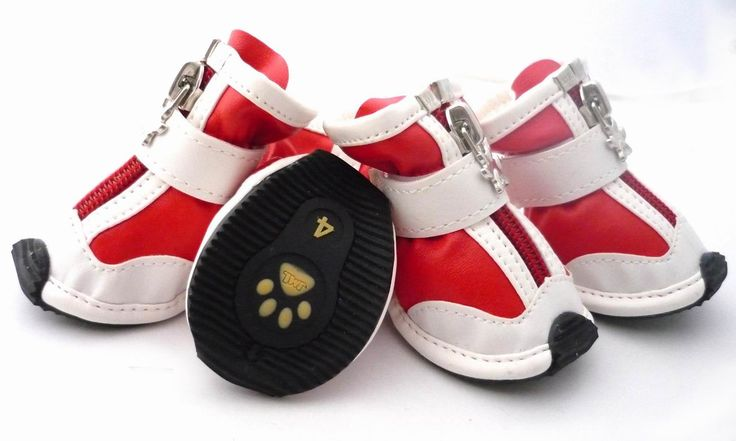Dog's shoes.So cute.