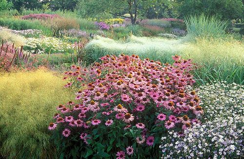 43 best piet oudolf images on pinterest garden ideas for Gardening with grasses piet oudolf