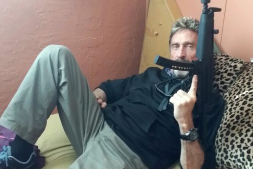 Bizarre Interview With Developer John McAfee About the Tools He Uses Focuses Mostly on Guns