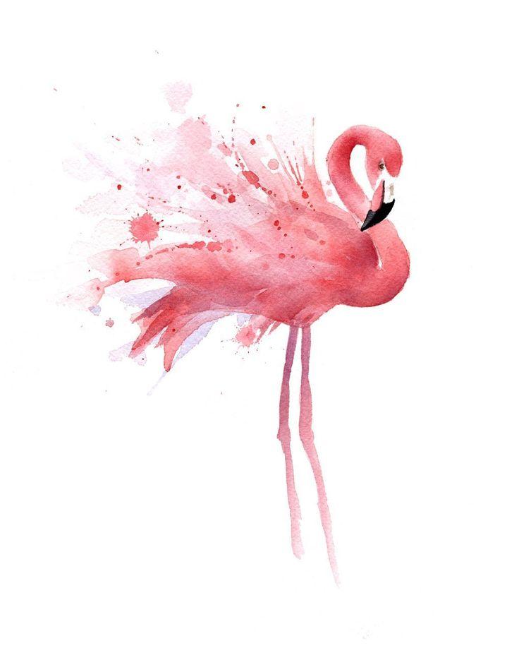 "Amazon.com: ""Flamingo"" Watercolor Art Print Signed by Artist DJ Rogers: Posters & Prints"