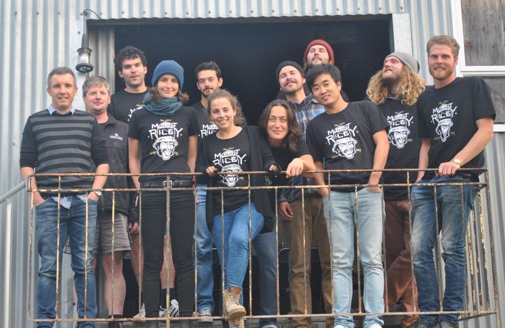 The Mount Riley winery crew from Vintage 2016