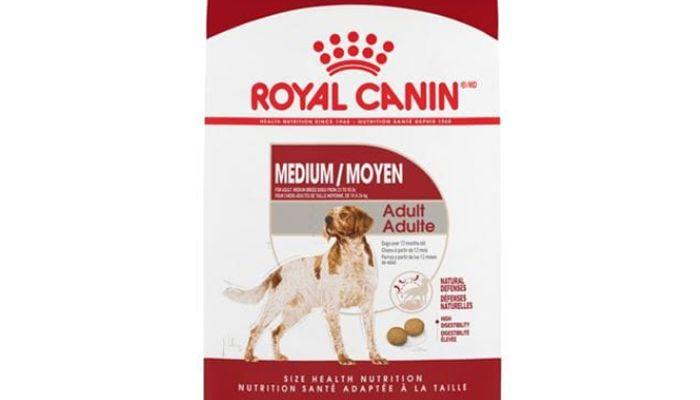 Royal Canin Dog Food Review 2021 Dog Nerdz Royal Canin Dog Food Dog Food Reviews Dog Food Recipes