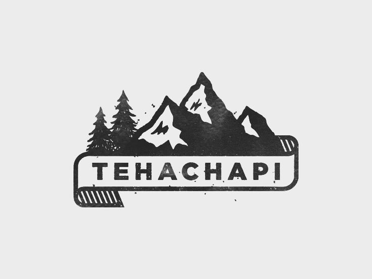 This logo right here is an excellent example of a nature store or somewhere you'd go to get supplies to go camping. It's black/gray. I really like how organic the mountains and trees look while the band with the text on it is very clean and straight.