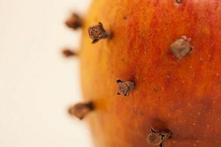 Cómo deshacerse de las moscas domésticas con clavos de olor