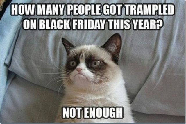 20 Funny Black Friday Memes That Will Make You LOL: Grumpy Cat