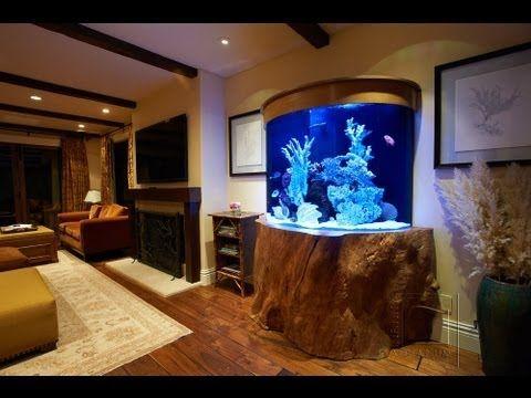 17 Best Images About Home Aquariums On Pinterest