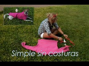 Picnic Blanket, Outdoor Blanket, Dog Wear, Diy Clothes, Dog Lovers, Puppies, Sewing, Dogs, Animals