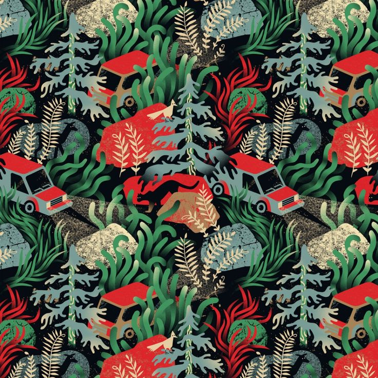 National Park Pattern, Personal Work | Antra Svarcs | makersmgmt.com