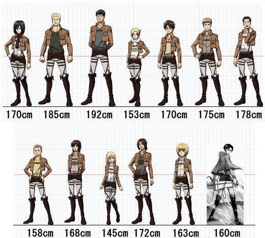 Shingeki no Kyojin- Height Measurement by Sushi4love on DeviantArt