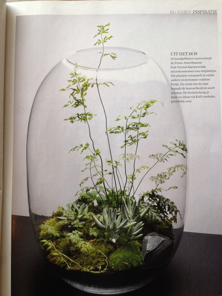 Gezien in Elle Decoration, prachtige manier om een grote vaas te gebruiken.