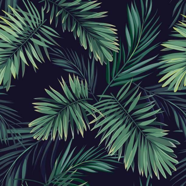 Fundo escuro tropical com plantas de selva. Padrão de tropical vetor sem costura com palmeira Fênix verde folhas - ilustração de arte em vetor