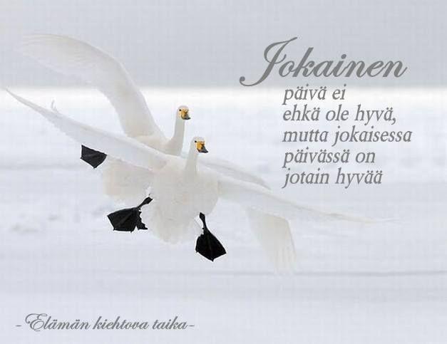 'Perhaps each day won't be perfect but there's always something good in each of those'. (In Finnish) | Jokainen päivä... by Elämän kiehtova taika