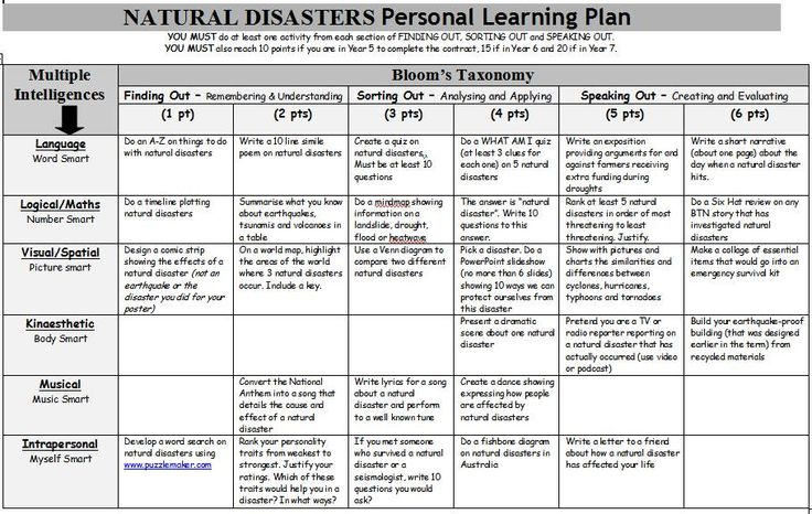 Natural Disasters Personal Learning Plan. A Gardner's Multiple Intelligence and Bloom's Taxonomy grid of activities on natural disasters