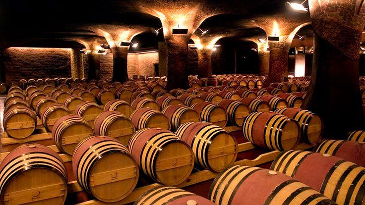 Kis spanyol bortörténet kezdőknek és haladóknak
