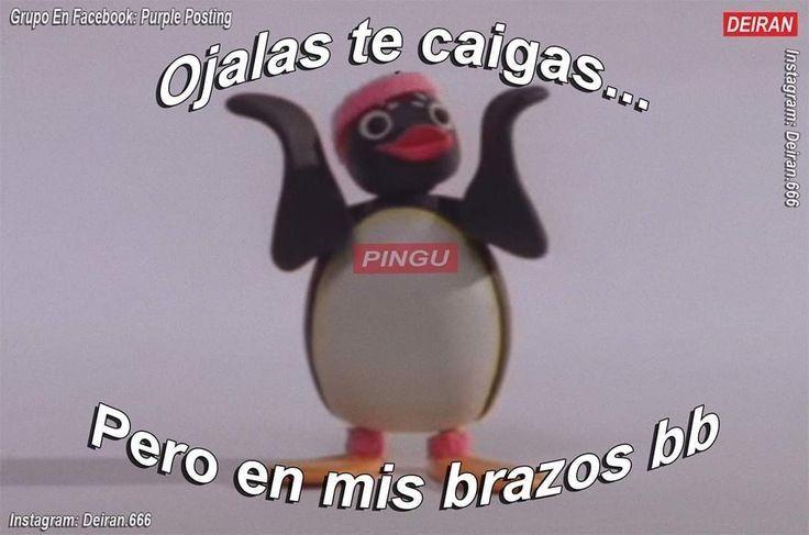 Memes Del Pinguinito Romantic Memes Pingu Memes Memes Sarcastic
