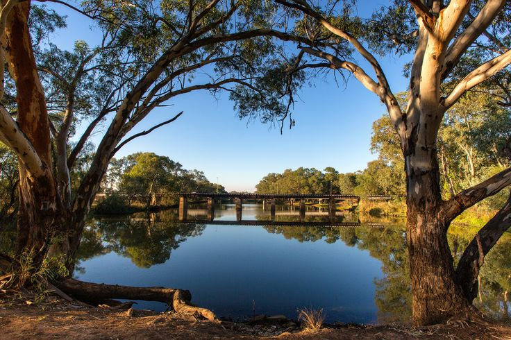 Bogan River at Nyngan NSW Australia
