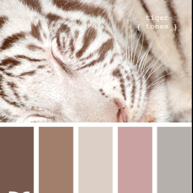 Bedroom Blues Meaning: 1000+ Images About Colour Palettes On Pinterest