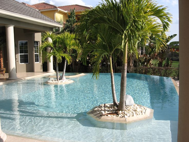 Pool : Chic Modern Pools Design With Homes Swimming Pool And Clear Glass  Water In Center Twin Palm Tree ~ HeimDecor