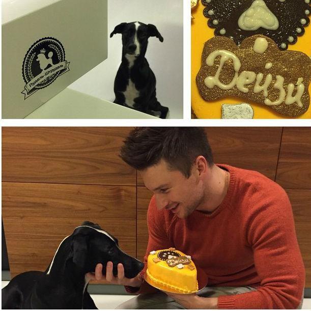 Сладкая жизнь: Сергей Лазарев делает бизнес на десертах для собак https://joinfo.ua/curious/1210022_Sladkaya-zhizn-Sergey-Lazarev-delaet-biznes.html