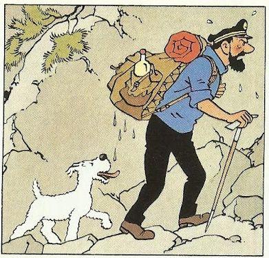 Pin By Olfat Abouelfetouh On Tintin Pinterest Tintin Whisky And