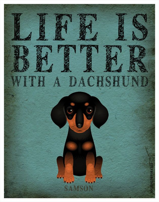 Life is Better with a Dachshund. So true.