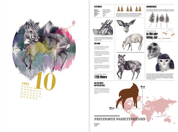 infographic design, animal, cryptozoology, saola, illustration, calendar #ElementEdenArtSearch