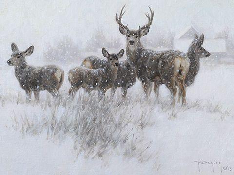 """Our Winter Neighbors"" by Robert Duncan"