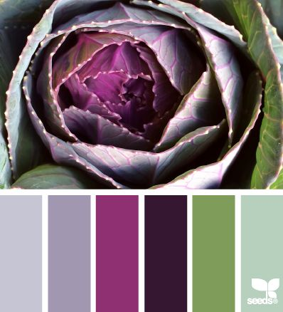Nature Hues - http://design-seeds.com/index.php/home/entry/nature-hues28