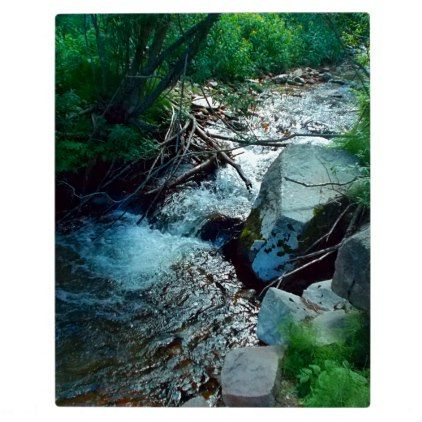 Wild Forest River Plaque - wood gifts ideas diy cyo natural