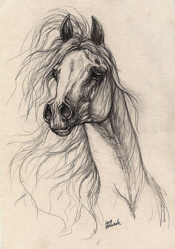 Grey arabian horse original pencil drawing by AngelHorses on Etsy, £45.00